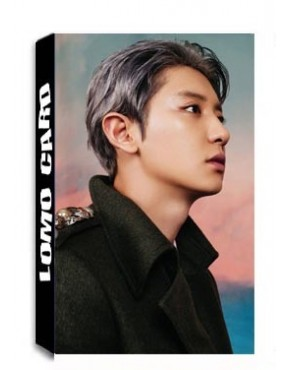 Chanyeol Don't Mess Up My Tempo Lomo Cards