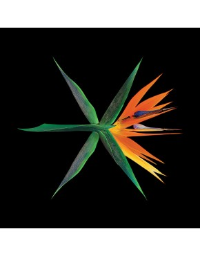 EXO - Album Vol.4 [THE WAR] (Chinese Version) CD