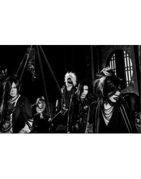 the GazettE- Ugly [DVD, Limited Edition]
