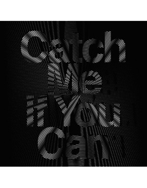Girls' Generation - Catch Me If You Can [CD+DVD Regular Edition]