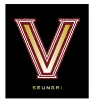 Big Bang : Seung Ri - Mini Alubm Vol.1 [V.V.I.P]