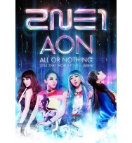 2014 2NE1 WORLD TOUR -ALL OR NOTHING- in Japan