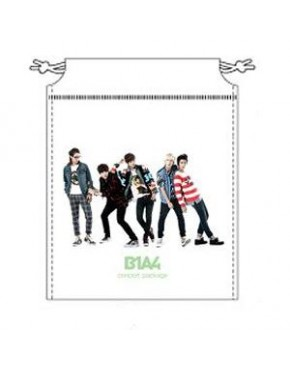B1A4 - New Package (2012 B1A4 1st Live Concert In Seoul + 2013 B1A4 Limited Show)