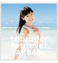 AKB48 Labrador Retriever [Tipo 4 / CD+DVD / Regular]