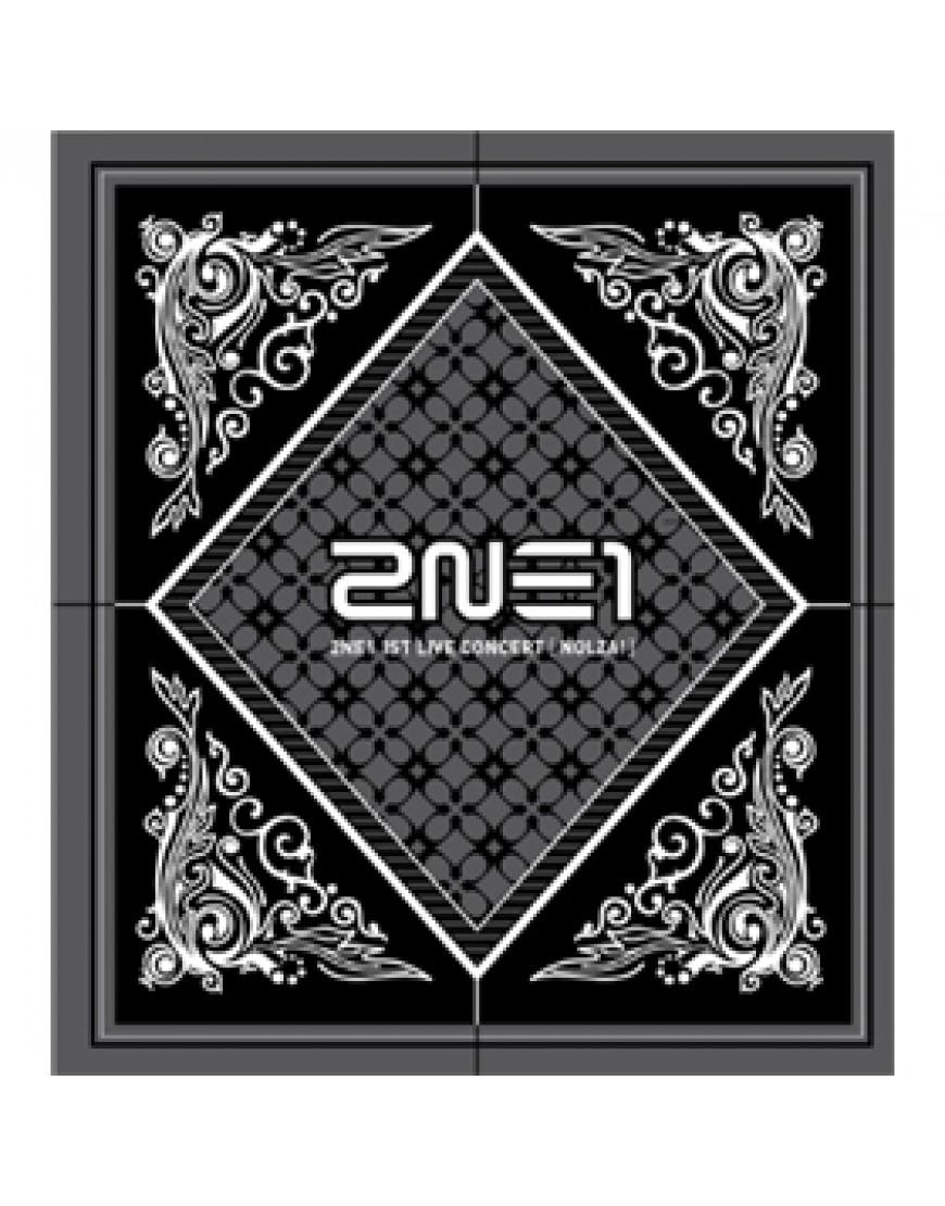2NE1 - 1st Live Concert [NOLZA!]  CD popup
